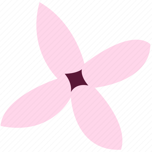 bouvardia, decoration, floral, flower, nature icon