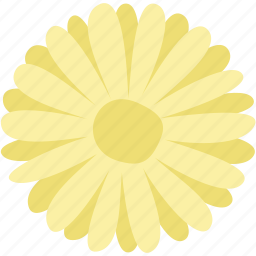 daisy, floral, flower, garden, nature, plant icon