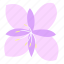 decoration, fireweed, floral, flower, nature icon
