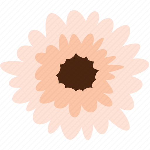 daisy, floral, flower, gerbera, nature, plant icon