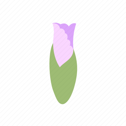 bud, decoration, floral, flower, iris, nature icon