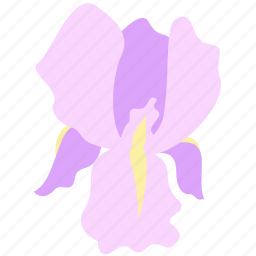 decoration, floral, flower, iris, nature icon