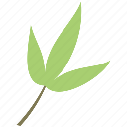 bamboo, decoration, leaf, nature icon
