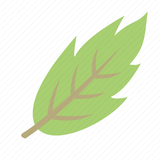 decoration, green, leaf, nature, plant icon