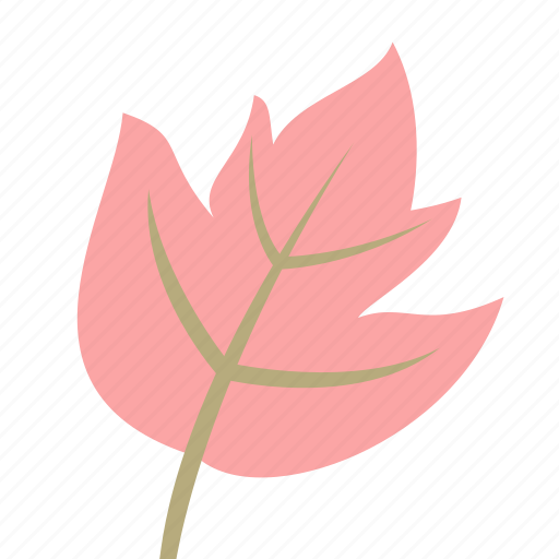 autumn, leaf, maple, nature, plant icon