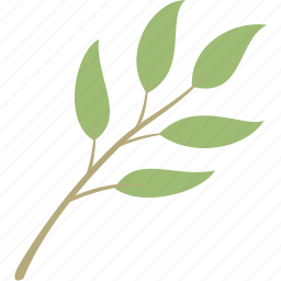 decoration, leaf, leaves, nature, plant icon