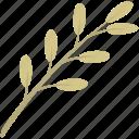 decoration, leaf, leaves, nature, plant