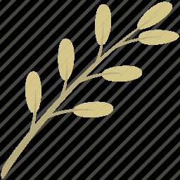 decoration, leaf, leaves, nature, plant icon