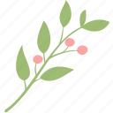 berry, branch, decoration, leaf, leaves, plant icon