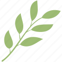 branch, decoration, leaf, leaves, nature, plant icon
