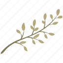 leaf, nature, leaves, decoration, green, branch