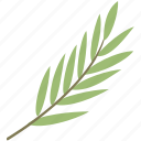 bamboo, branch, green, leaf, leaves icon