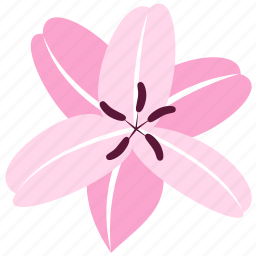 decoration, floral, flower, lily, nature icon