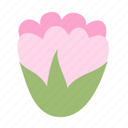 big, bud, floral, flower, nature, pink icon