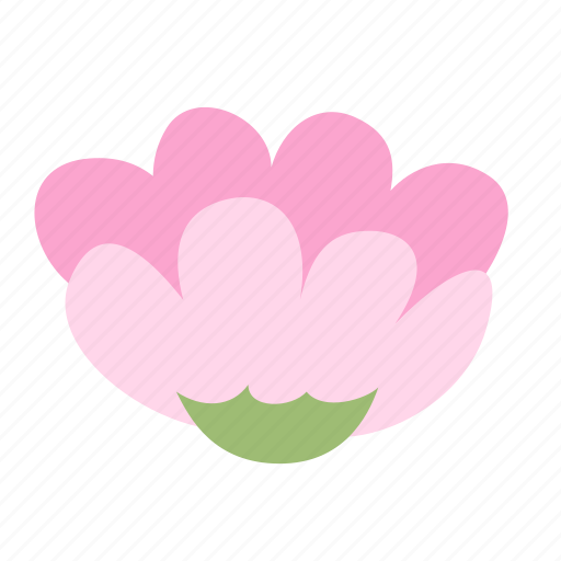 blossom, bud, decoration, floral, flower, pink icon