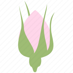 bud, decoration, floral, flower, nature, rose icon