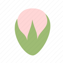 bud, floral, flower, nature, small, star icon