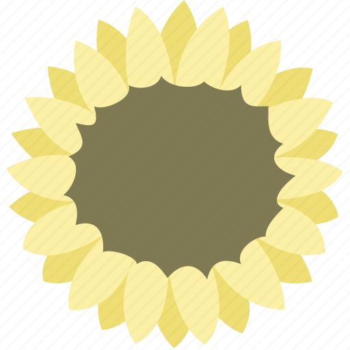 daisy, flower, garden, nature, spring, sunflower icon