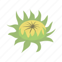 bud, floral, flower, nature, sunflower icon