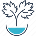 food, grape, sprout, water icon
