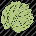 eco, ecological, foliage, leaf, linden leaf, nature icon
