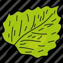 eco, ecological, foliage, leaf, lime leaf, nature icon
