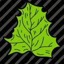 auriculate leaf, eco, ecological, foliage, leaf, nature icon