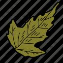 botanical, eco, ecological, foliage, leaf, nature icon