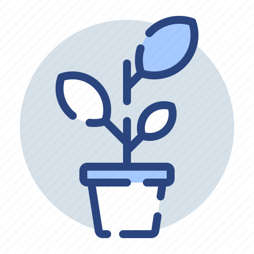 ecology, environment, growth, leaf, leaves, plant, pot icon