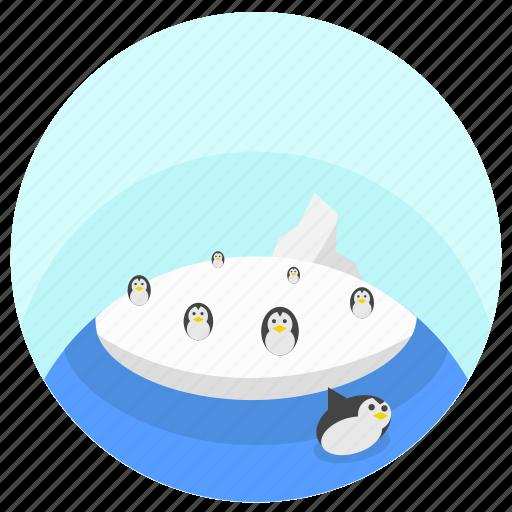antarctic icon