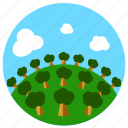 forest, green, nature, rain, trees icon