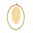 fruit, healthy, kernel, mango, stone, tropical icon