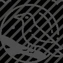 crow, witch, halloween, bird icon