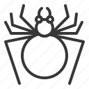 bug, halloween, horror, insect, scary, spider, spooky icon