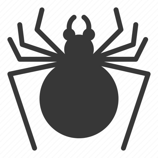 big, halloween, horror, insect, scary, spider, spooky icon