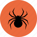 crawly, creepy, halloween, scary, spider icon