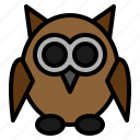 animal, bird, fearful, halloween, night, owl, spooky
