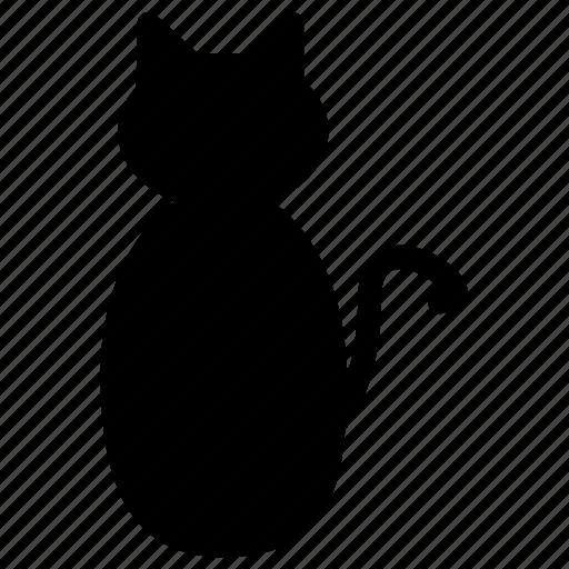 animal, autumn, cat, halloween, holidays icon
