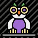 owl, animal, halloween, knowledge, wisdom