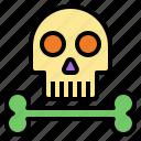 skull, skeleton, halloween, death, dangerous, bone