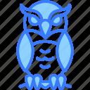 owl, bird, fly, night, wildlife, scary, halloween
