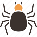 evil, halloween, insect, spider