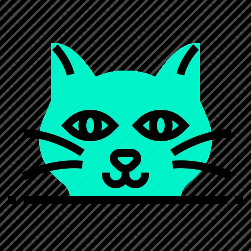 animal, cat, mammal, pet icon