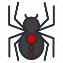 halloween, horror, spider icon icon