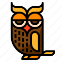 animal, halloween, night, owl, poultry icon