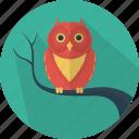 animal, fear, halloween, owl icon