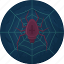 animal, celebration, cobweb, evil, halloween, holiday, spider icon