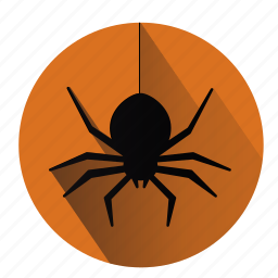 creepy, halloween, monsters, scary, spider, spiderweb, web icon