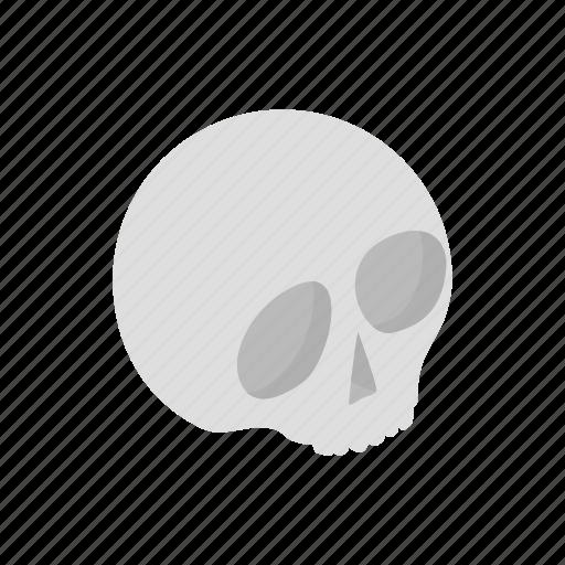 bone, death, halloween, head, isometric, medical, skull icon