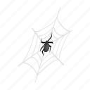 arachnid, danger, halloween, horror, insect, isometric, spider icon